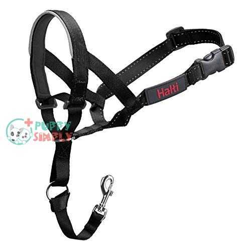 Halti Head Collar, Head Halter