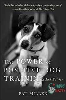 The Power of Positive Dog