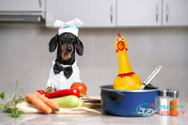 how to boil chicken for dogs